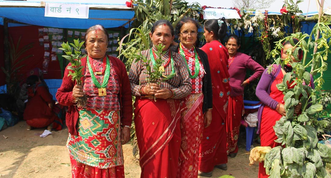 Local Crop Diversity Fair in Jugu, Dolakha: A move towards normal life in the aftermath of devastating earthquake