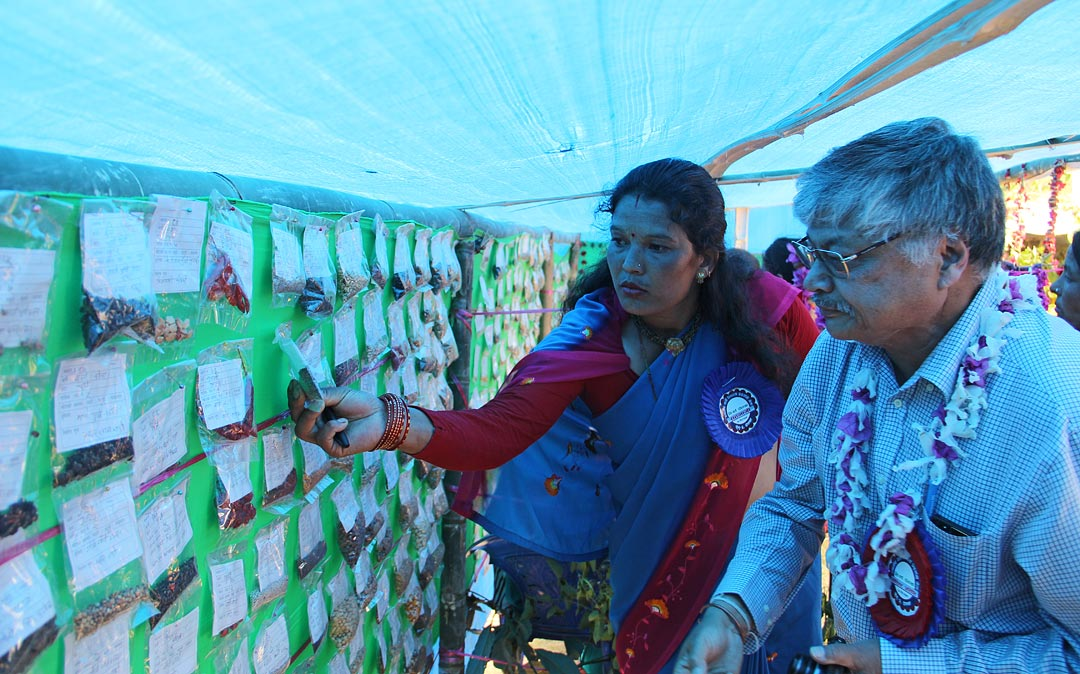 A participant interacting with Dr. Bhuwon Ratna Sthapit in her stall. Photo: Bibudh Dhewaju/LI-BIRD.