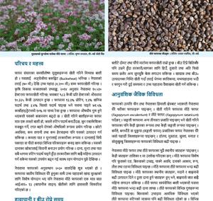 फापरखेती र बीउ उत्पादन प्रविधि (जानकारी पत्र)