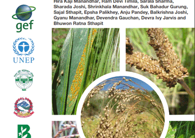 A Field Guide for Identification and Scoring Methods of Diseases in the Mountain Crops of Nepal