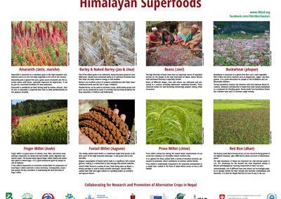 Himalayan Superfoods