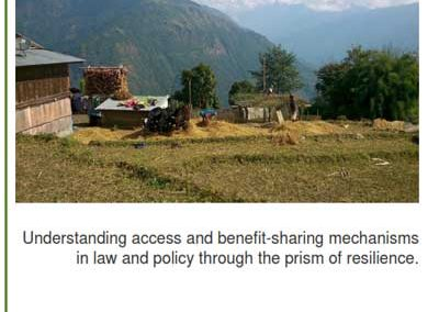 Resilient Seeds: Understanding Access and Benefit-sharing Mechanisms in Law and Policy through the prism of Resilience