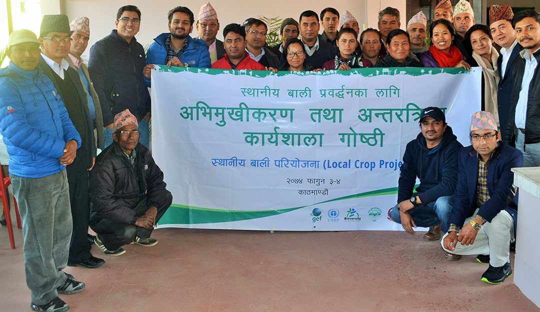 Engaging Local Government to Promote Local Crops